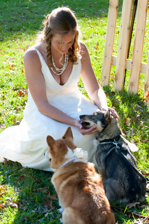 Easiest decision ever: Having our two dogs for the ring bearers.